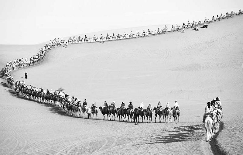 资料图片 来源:网络-敦煌鸣沙山大量游客 骑骆驼 骆驼 过劳死